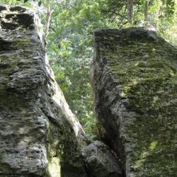 Rochers du massif hercynien