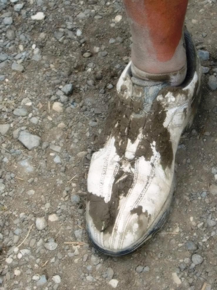 Giez chaussures de roland