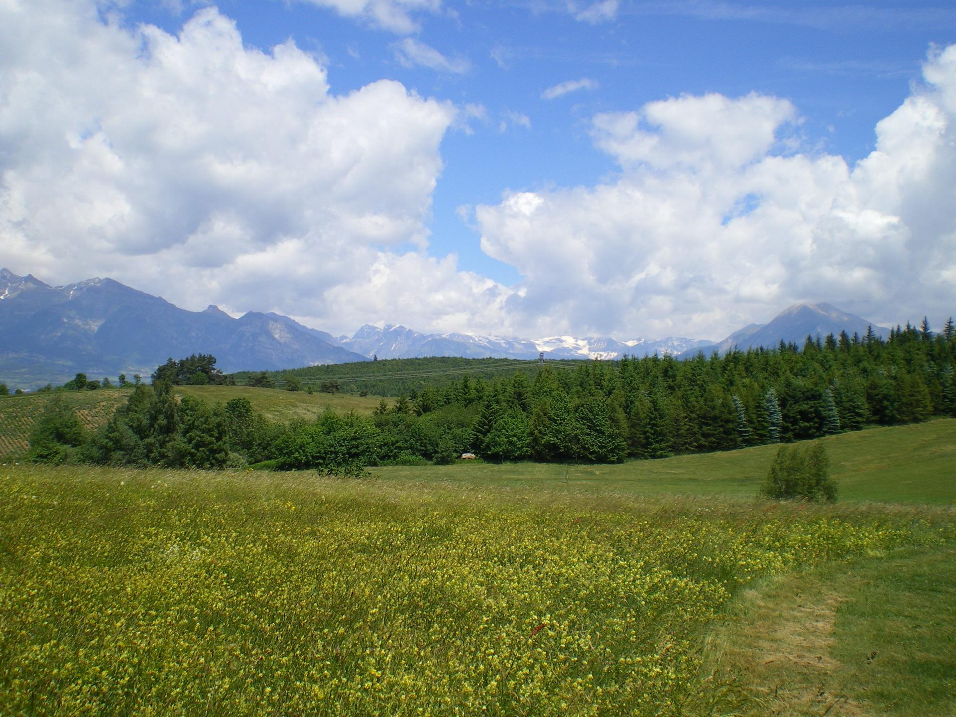 A l'Est, les sommets du Champsaur et des Ecrins